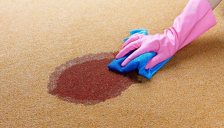 - آیا دستمال خیس و مرطوب نجاست را پاک میکند؟