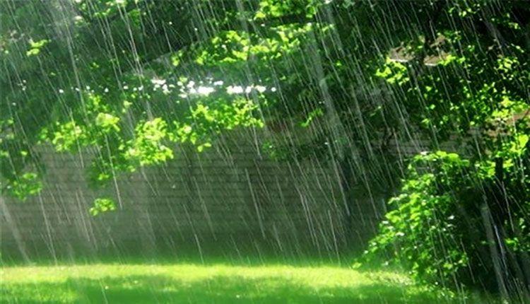 - احکام آب باران / تطهیر چیز نجس با آب باران